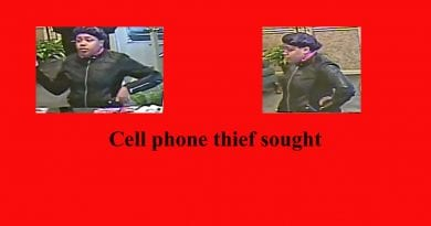 cell-phone-thief