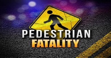 Forty-year-old killed a while standing in the middle of I-495; Police investigating