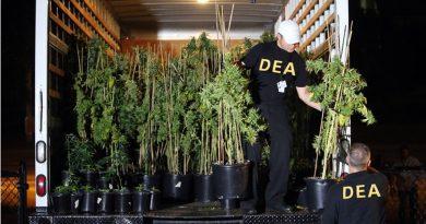 DEA-Justice-department