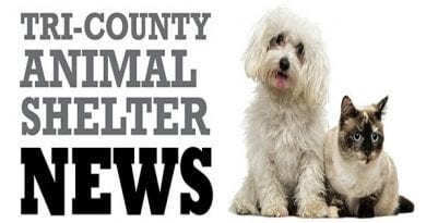 tri-county-animal-shelter