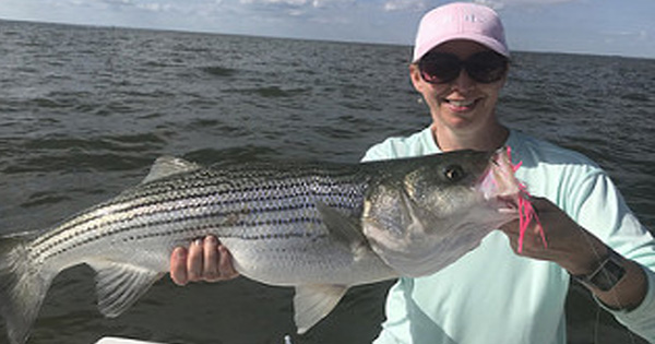 Maryland Fishing Report for the week ending June 1, 2018 - The