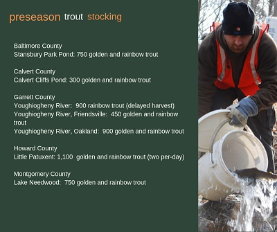 Pre-Season Trout Stocking in Southern Maryland this week - The