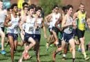 Men's Cross Country Selected to Finish Sixth in CAC Preseason Poll