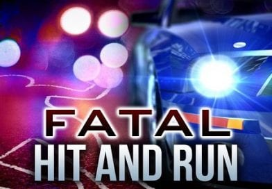 Police search for driver in Brandywine fatal hit and run