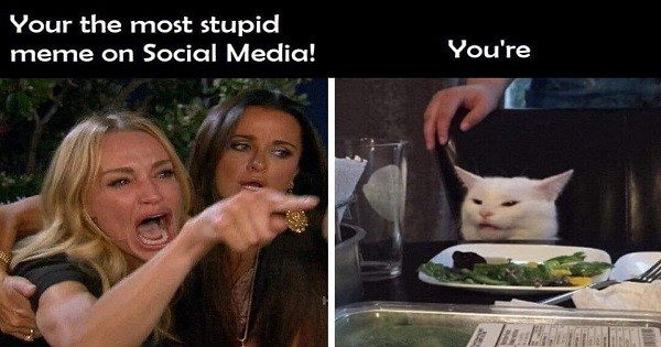 Woman Yelling At Cat Meme Takes Over The Internet The