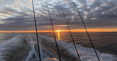 Maryland Fishing Report for December 13, 2019