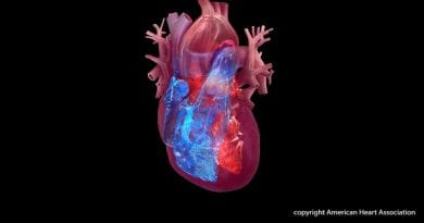 Treating more than just the heart is critical for geriatric patients