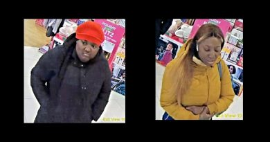 Suspects sought in Ulta Beauty theft