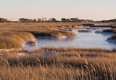Governor Hogan Urges Congressional Leaders to Protect and Increase Funding for Chesapeake Bay Restoration
