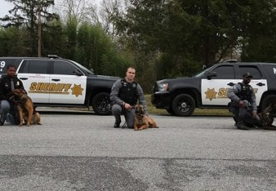 CCSO welcomes two K-9's to its ranks
