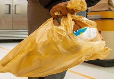 Md. bill would ban plastic carryout bags from stores