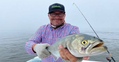 Maryland Fishing Report for Friday, June 5, 2020